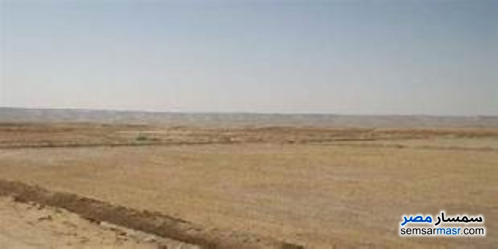 Photo 1 - Land 450 sqm For Sale Hurghada Red Sea