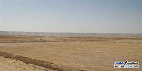 Land 450 sqm For Sale Hurghada Red Sea - 1