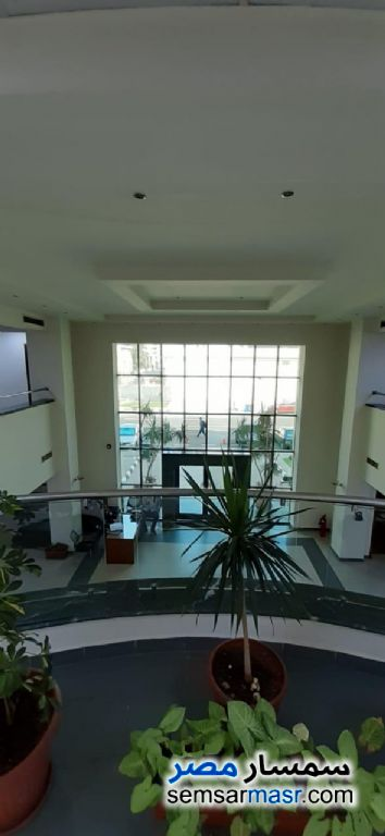 Photo 2 - Commercial 1,700 sqm For Rent Nasr City Cairo