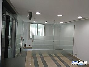 Commercial 5,000 sqm For Rent Maadi Cairo - 3