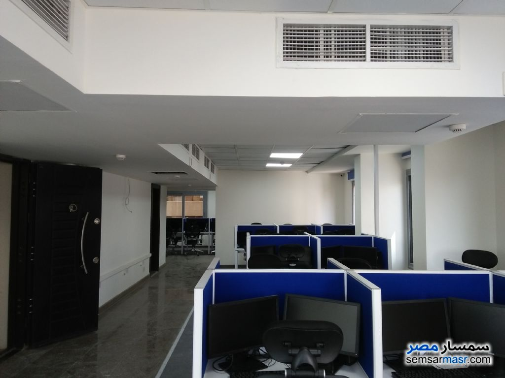 Photo 8 - Commercial 5,000 sqm For Rent Maadi Cairo