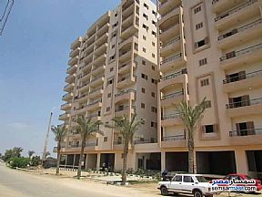Ad Photo: Commercial 420 sqm in Shibin El Kom  Minufiyah