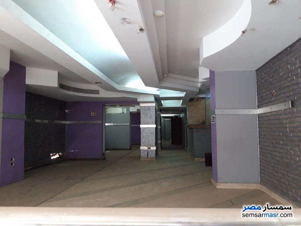 Photo 1 - Commercial 285 sqm For Rent Dokki Giza