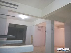 Ad Photo: Commercial 300 sqm in Mansura  Daqahliyah