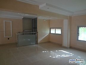 Ad Photo: Commercial 65 sqm in Al Lbrahimiyyah  Alexandira
