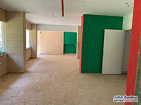 Ad Photo: Commercial 210 sqm in Maadi  Cairo