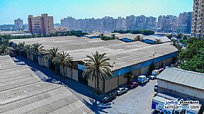 Ad Photo: Commercial 720 sqm in Smoha  Alexandira
