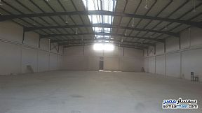 Ad Photo: Commercial 1300 sqm in Smoha  Alexandira