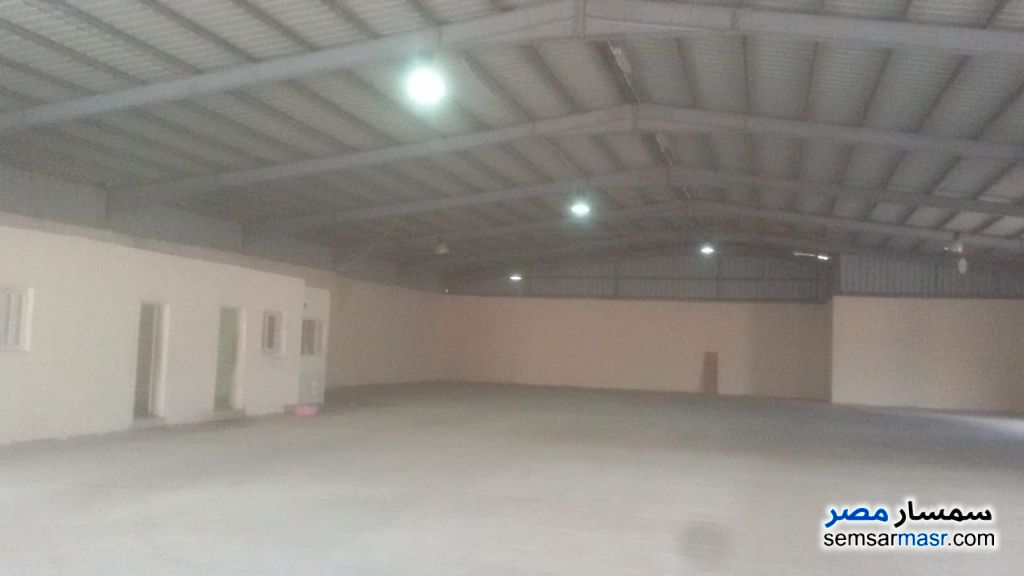 Photo 1 - Commercial 1,350 sqm For Rent Moharam Bik Alexandira