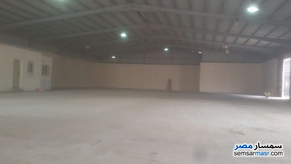 Photo 3 - Commercial 1,350 sqm For Rent Moharam Bik Alexandira