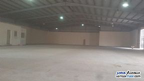 Commercial 1,350 sqm For Rent Moharam Bik Alexandira - 3