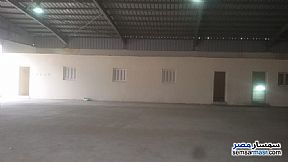 Commercial 1,350 sqm For Rent Moharam Bik Alexandira - 4