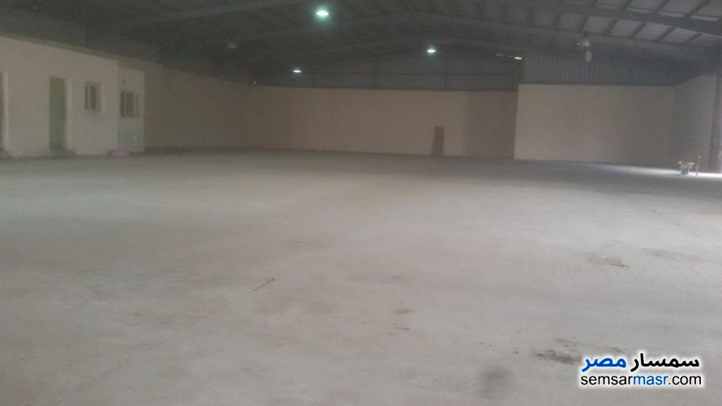 Photo 2 - Commercial 1,350 sqm For Rent Moharam Bik Alexandira