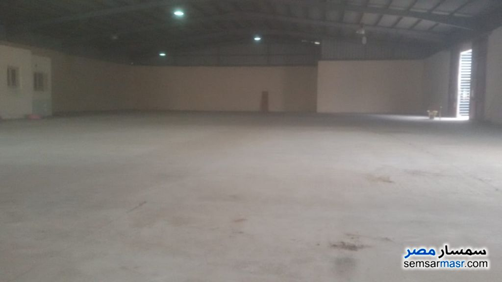 Photo 5 - Commercial 1,350 sqm For Rent Moharam Bik Alexandira