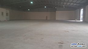 Commercial 1,350 sqm For Rent Moharam Bik Alexandira - 5