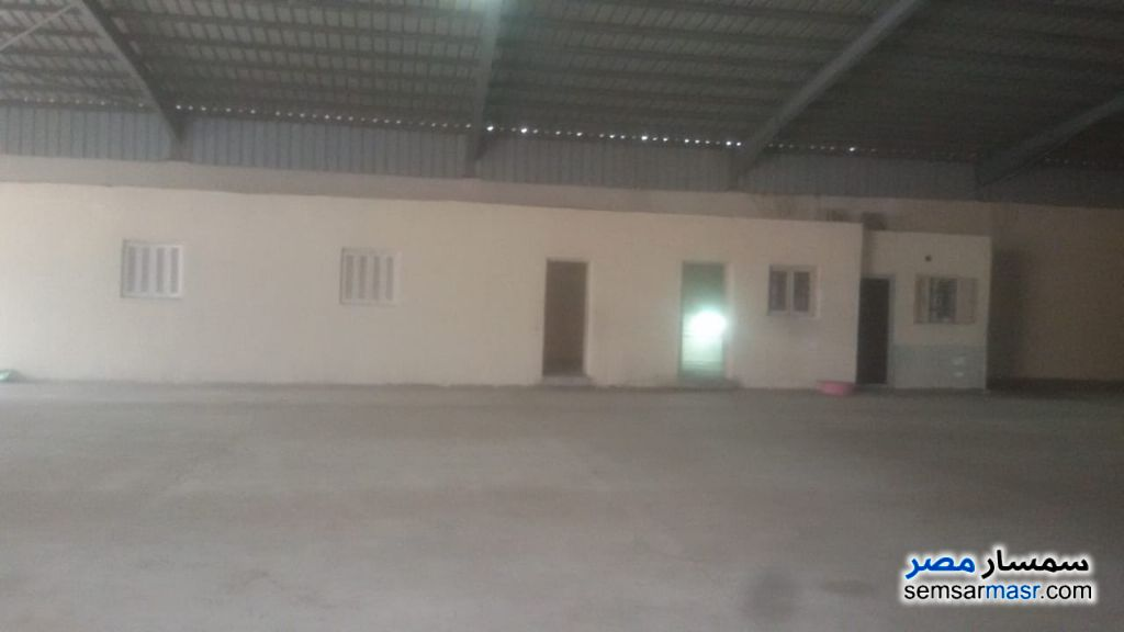 Photo 7 - Commercial 1,350 sqm For Rent Moharam Bik Alexandira