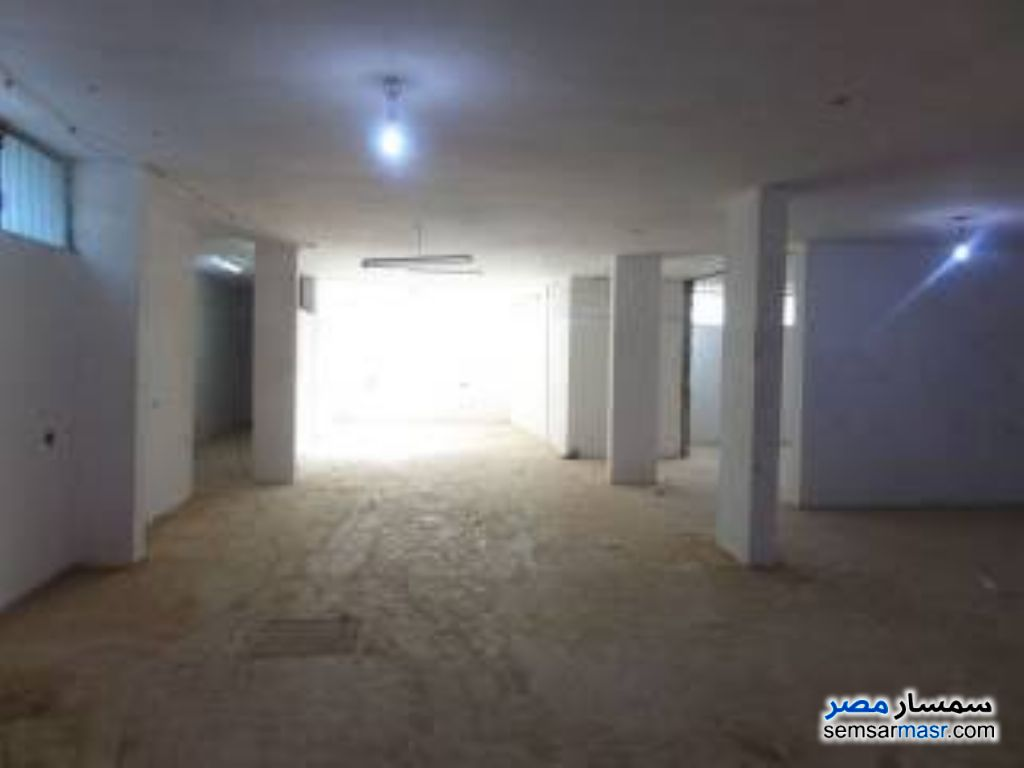 Ad Photo: Commercial 172 sqm in Mansura  Daqahliyah
