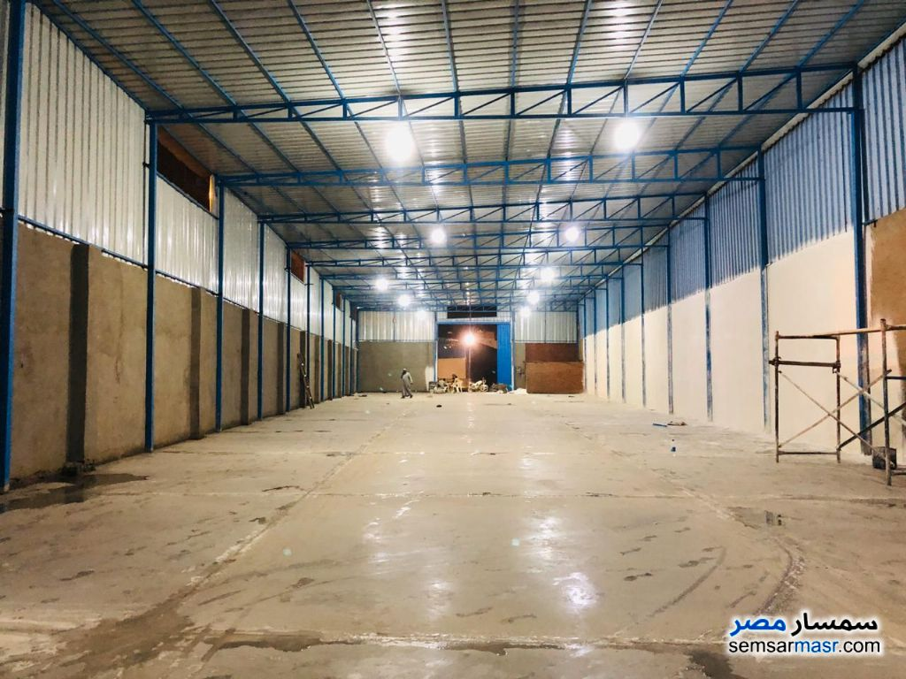 Photo 2 - Commercial 800 sqm For Rent Al Salam City Cairo