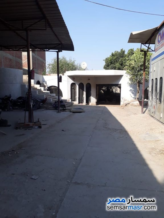 Photo 12 - Commercial 1,500 sqm For Rent Maryotaya Giza