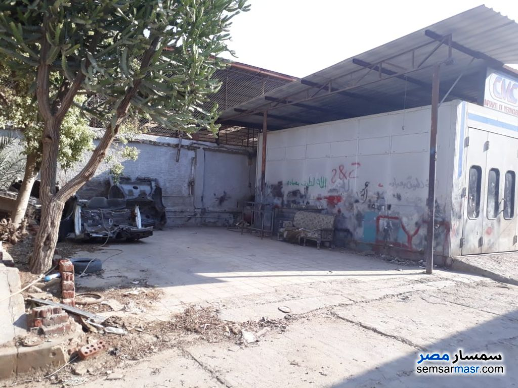 Photo 2 - Commercial 1,500 sqm For Rent Maryotaya Giza