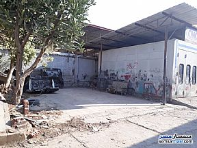 Commercial 1,500 sqm For Rent Maryotaya Giza - 2