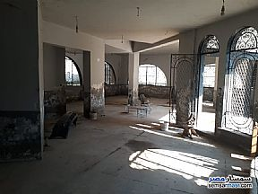 Commercial 1,500 sqm For Rent Maryotaya Giza - 3