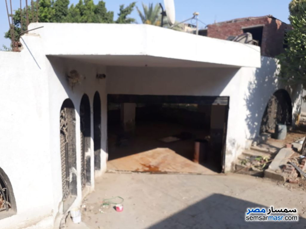 Photo 6 - Commercial 1,500 sqm For Rent Maryotaya Giza