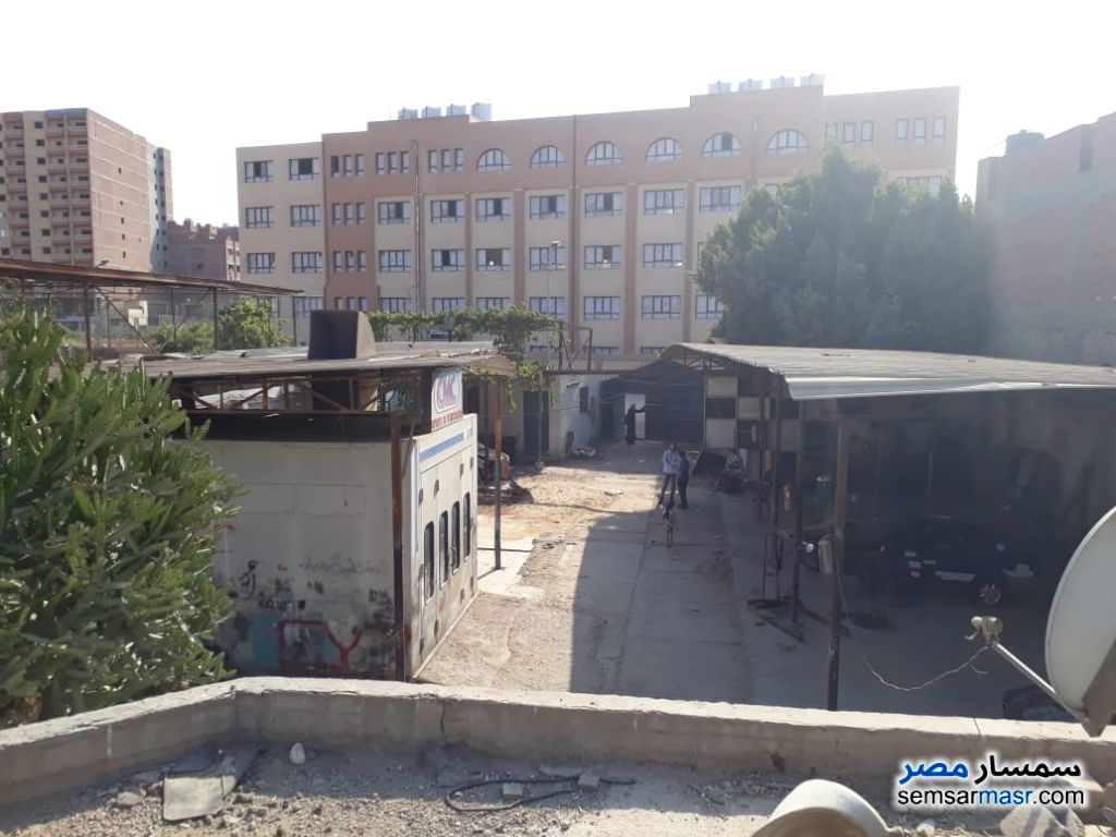 Photo 8 - Commercial 1,500 sqm For Rent Maryotaya Giza