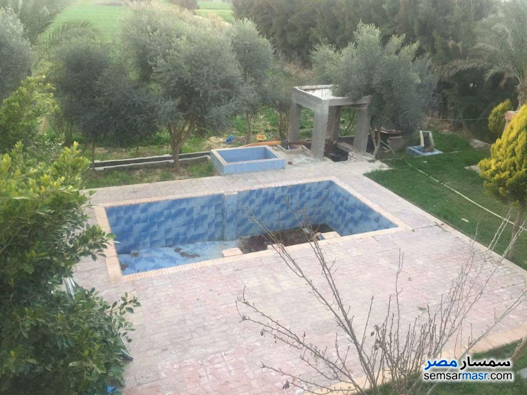 Photo 4 - Farm 10 acre For Sale Borg Al Arab Alexandira