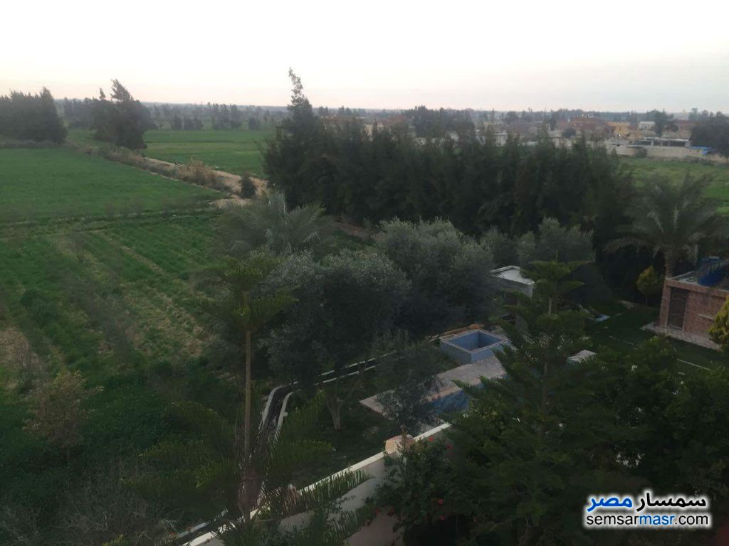 Photo 5 - Farm 10 acre For Sale Borg Al Arab Alexandira