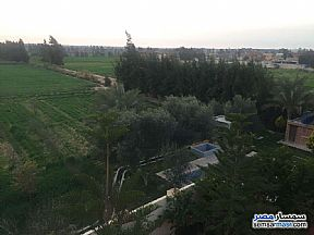 Farm 10 acre For Sale Borg Al Arab Alexandira - 5