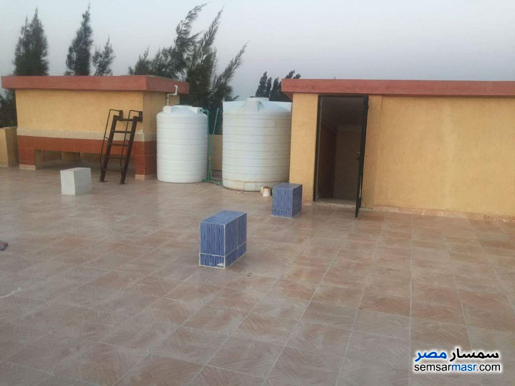 Photo 7 - Farm 10 acre For Sale Borg Al Arab Alexandira