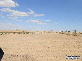Farm 21 acre For Sale Fayoum City Fayyum - 2