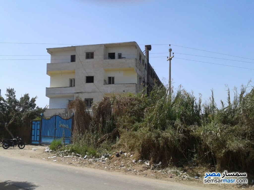 Photo 2 - Land 963 sqm For Sale Quesna Minufiyah