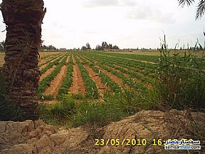 Ad Photo: Farm 18000 sqm in Cairo Alexadrea Desert Road  Alexandira