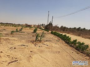 Ad Photo: Farm 3 acre in Fayoum City  Fayyum