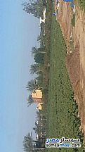 Ad Photo: Farm 63375 sqm in Cairo Alexadrea Desert Road  Alexandira