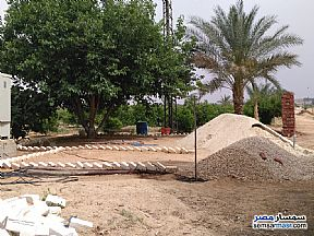 Ad Photo: Farm 10 acre in 10th Of Ramadan  Sharqia