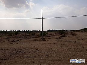 Ad Photo: Farm 3 acre in El Ubour City  Qalyubiyah