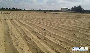 Ad Photo: Farm 25 acre in New Fayoum  Fayyum