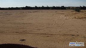 Ad Photo: Farm 20 acre in Suez District  Suez