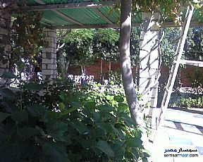 Ad Photo: Farm 57 acre in Cairo Alexadrea Desert Road  Alexandira