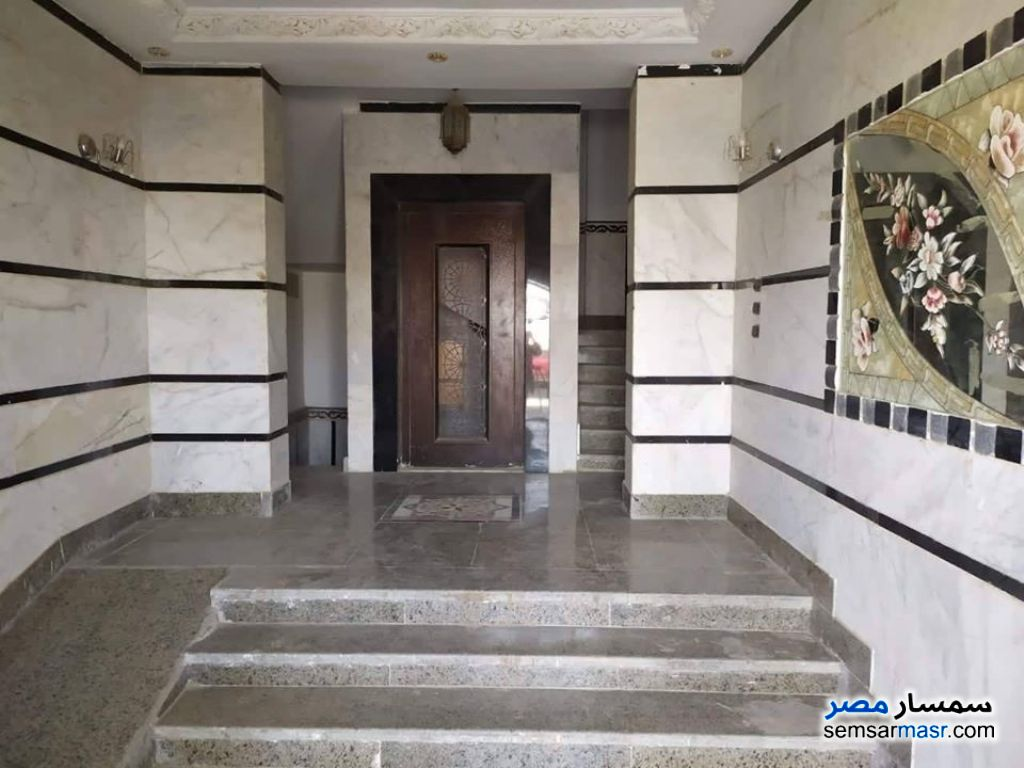 Photo 4 - Room 20 sqm For Rent First Settlement Cairo