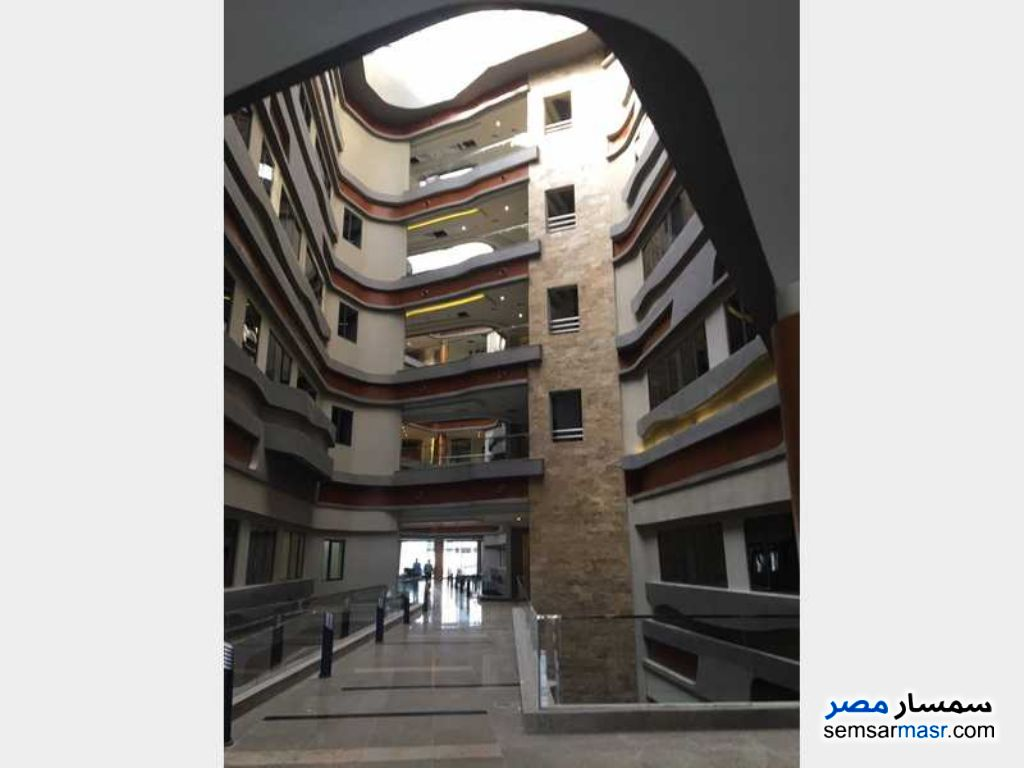 Photo 2 - Commercial 380 sqm For Rent Maadi Cairo