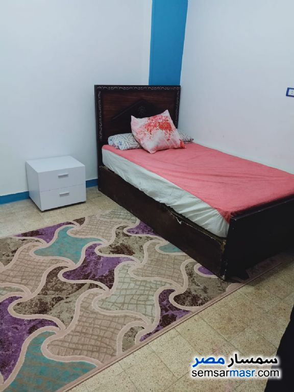 Ad Photo: Room 150 sqm in Egypt
