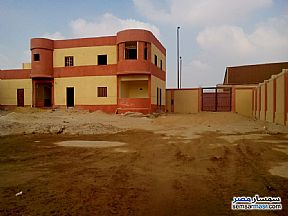 Ad Photo: Land 2200 sqm in Al Wasta  Beni Suef