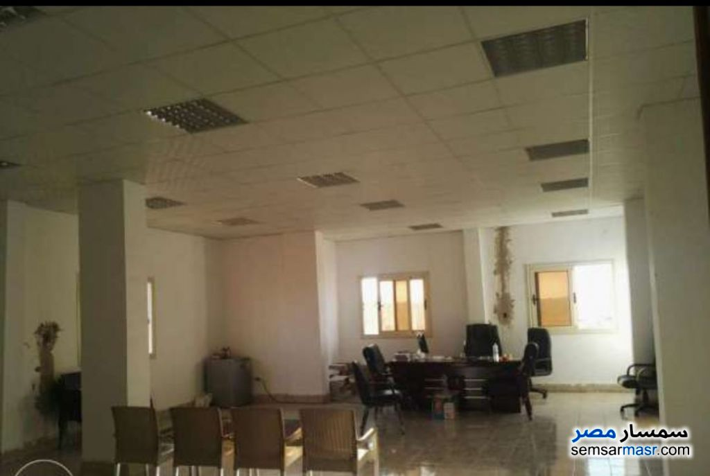 Photo 2 - Land 1,350 sqm For Sale Ajman Industrial Area 6th of October