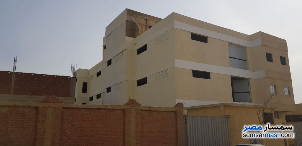 Photo 3 - Land 1,350 sqm For Sale Ajman Industrial Area 6th of October