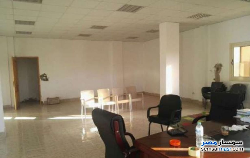 Photo 4 - Land 1,350 sqm For Sale Ajman Industrial Area 6th of October