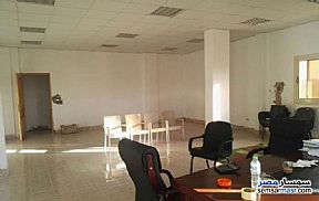 Land 1,350 sqm For Sale Ajman Industrial Area 6th of October - 4